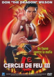 Огненное кольцо 3: Удар льва